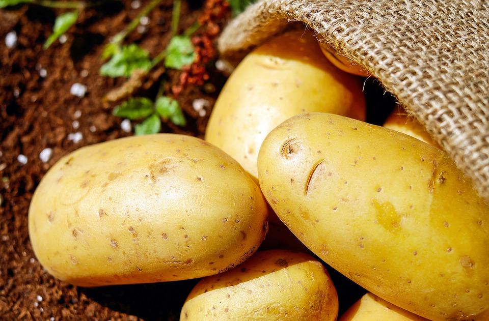 potato shortages